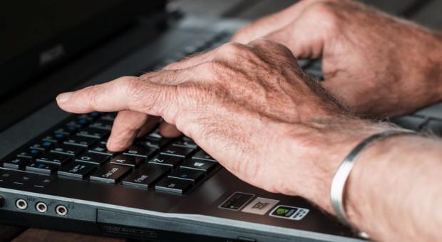 Job Options for Seniors
